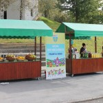 LokalnaHrvatska.hr Sveti Kri� Za�retje Odrzana Naj akcija pod naslovom �Zaboravljene igre�